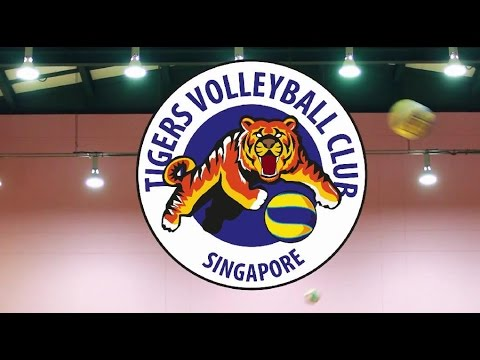 Tigers Volleyball Club (Singapore)