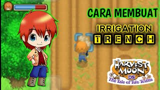 CARA MEMBUAT IRRIGATION TRENCH HARVEST MOON DS-THE TALE OF TWO TOWNS