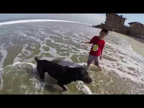 Manu & Luna en la playa