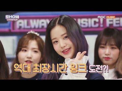 Show Champion EP.312 팬.아.저. 10초를 만들 아이즈원 엔딩요정은?