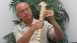 Pinched Nerve Relief Chiropractor St Petersburg Florida