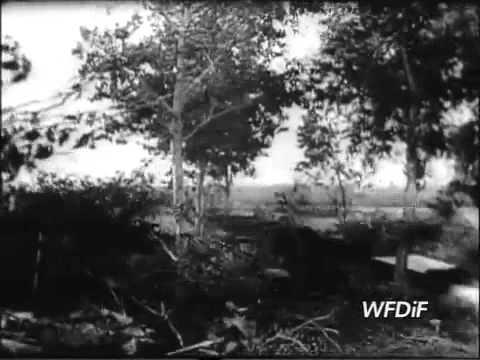Bitwa pod Lenino 12-13 października 1943 r