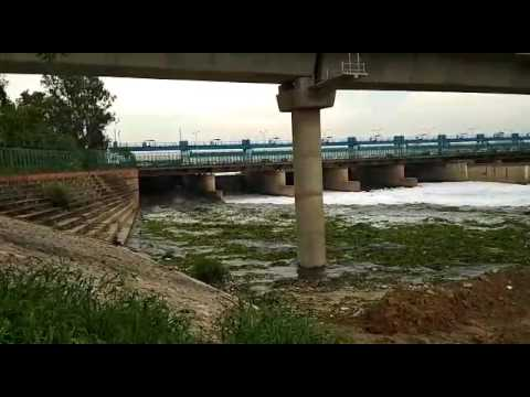 Black poison of Polluted yamuna river water at okhla brraje delhi