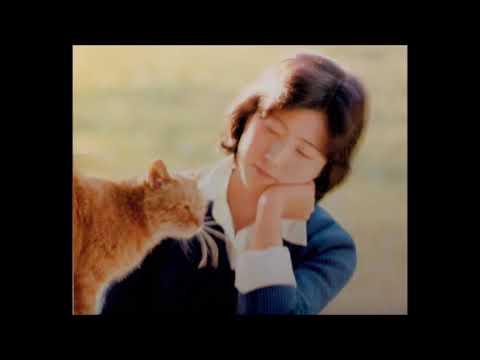 「少し遠出をしてみませんか」浦部雅美 (1977年)