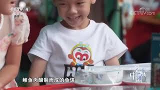 《美食中国》 20191210 5集系列片《品味江门》(2) 江孕海藏  美食中国 Tasty China