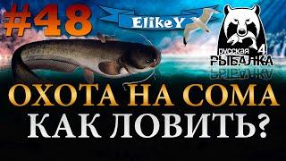 Сом на Minister 2000 Сборка на Сома Как и на что ловить Река Ахтуба Русская Рыбалка 4 48