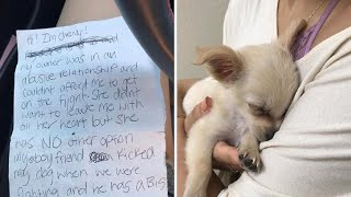 Puppy Found Alone at Airport With Tragic Note From Owner