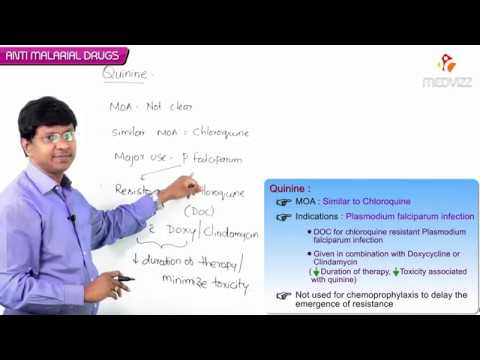 Download Anti malarial drugs - Quinine ( Pharmacology by Dr Rajesh Gubba )