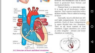Part 2 Class 8th Science | Human body and Organ system | Blood circulation system.