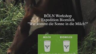 Workshop BÖLN -