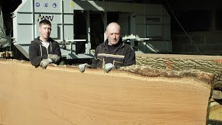 Uk Farmers Sawmilling English Oak