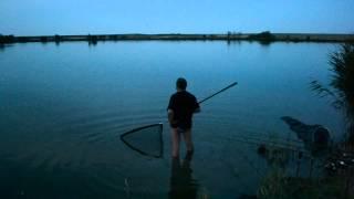 Рыбалка, пруд, большая рыба(, 2014-07-08T09:46:23.000Z)