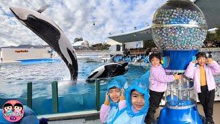หนูยิ้มหนูแย้ม   กดตู้ไข่ยักษ์ ดูโชว์วาฬ เที่ยวญี่ปุ่น EP4
