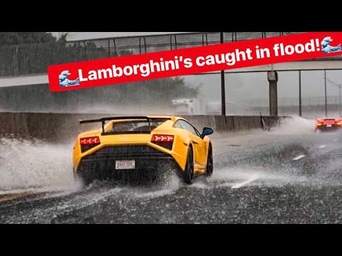 WATCH THESE RARE LAMBORGHINIS DRIVE FLOODED FREEWAY LIKE A BOSS!