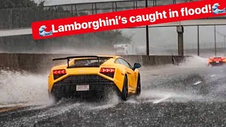 watch-these-rare-lamborghini-s-drive-flooded-freeway-like-a-boss