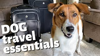 DOG TRAVEL ESSENTIALS // 5 Must Have Items When Traveling with A Dog
