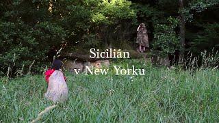 Sicilián v New Yorku | Tábor 2019