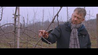 Gra o Plon S01E01 - zimowe cięcie drzew...