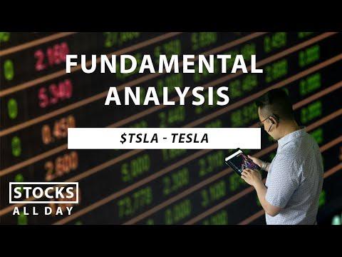 TSLA fundamental analysis