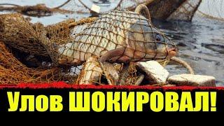 Ловим рыбу на сети Улов удивил Вот это улов Проверка сетей Рыбалка на сети весной