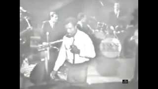 Little Richard - Whole Lotta Shakin