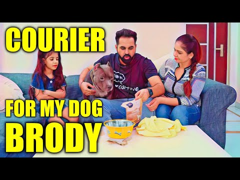 Courier for my Dog Brody | Funny dog videos | Harpreet SDC