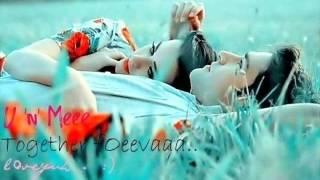 wo bedard by Qasim