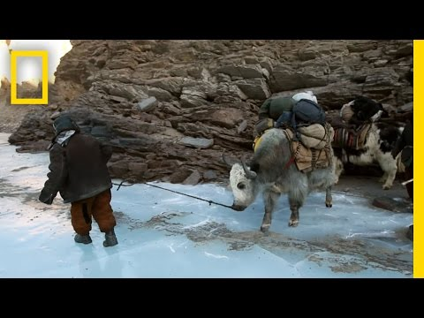 Life at the Roof of the World | National Geographic