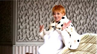 2014.12.15 shooting 宙組公演「白夜の誓い」千秋楽 凰稀かなめ退団公演...