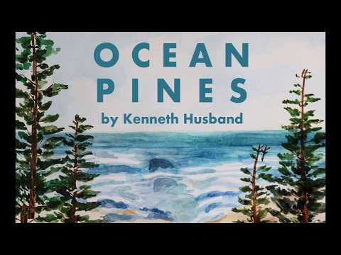 Mr. Husband // Ocean Pines  (Official Animated Audio)
