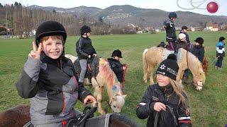 Odcvl - Initiation poney à La Fermeraie