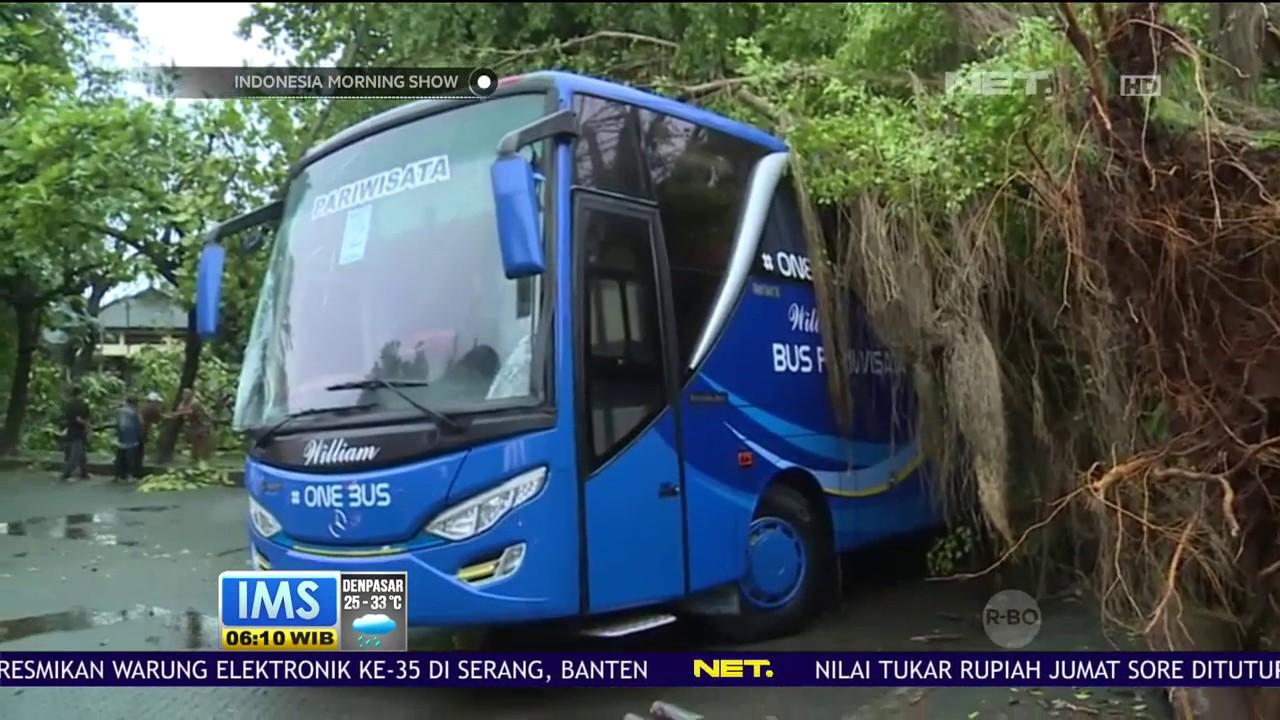 9 Bus Pariwisata & 9 Mobil Minibus Ringsek Tertimpa Pohon
