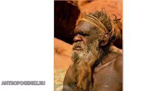 Австралия - тысячи лет одиночества