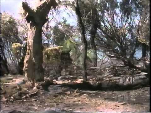 Prehistoric Australia Part 2