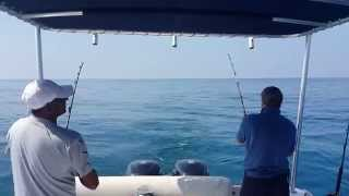 Big fishing game/dubaifishingtour/deepseafishing/boat rent/fishing trips dubai/call:+971503509699..