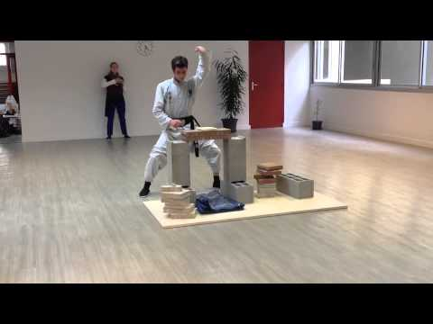 Nam Anh Pei Mei Kung Fu : Breaking bricks 1