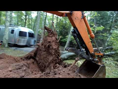 Pushing Oak trees away from a house