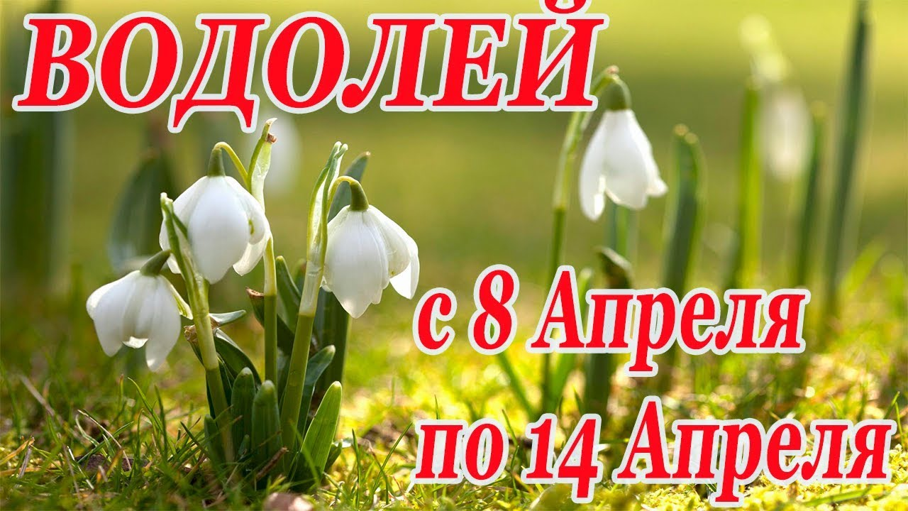 ВОДОЛЕЙ. гороскоп-расклад на 8,9,10,11,12,13,14 Апреля 2019 года. ЛенорманТаро ОНЛАЙН гадание.