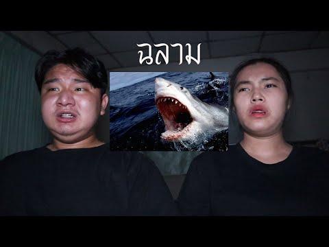พวกเราซื้อ ฉลาม มาจาก Dark Web! | หลอนดาร์กเว็บ EP.27