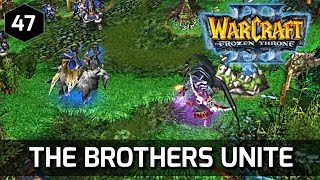 Warcraft 3 Story ► Malfurion is mad at Maiev and Frees Illidan
