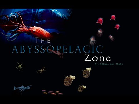 The Abyssopelagic Zone