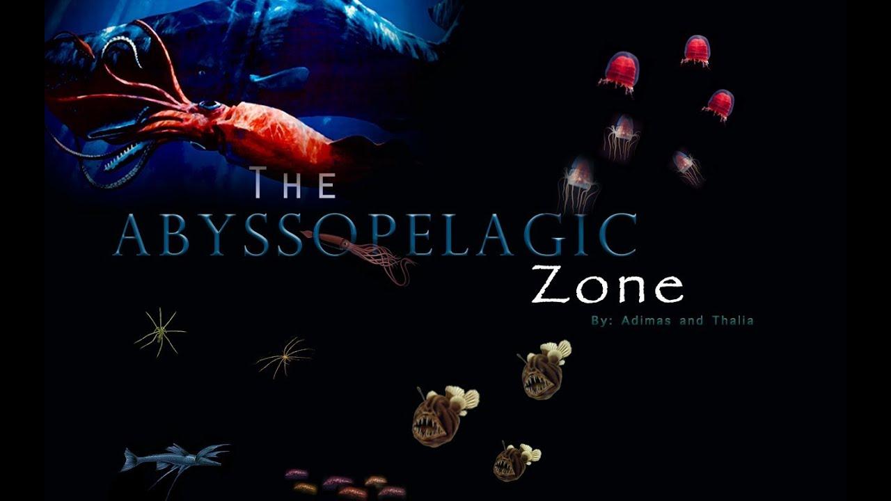Abyssopelagic Zone Animals