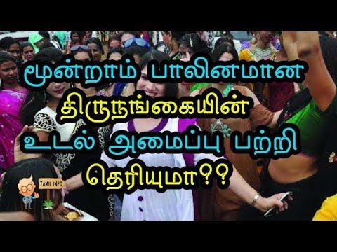 மூன்றாம் பாலினமான திருநங்கையின் உடல் அமைப்பு பற்றி தெரியுமா?(Thirunangai) - Tamil Info 2.0