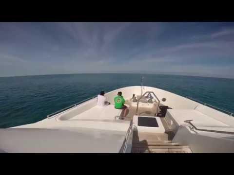 Bahamas Baby! - Salt / Yacht Life