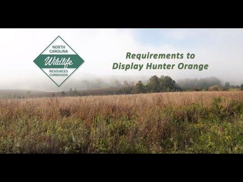 North Carolina Requirements To Display Hunter Orange