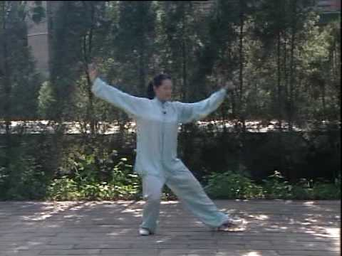 Yang Style 48 Form Tai Chi Chuan Funnycat Tv