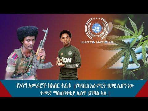 Ethiopian:የኦነግ አመራሮች ከእስር ተፈቱ የካናቢስ እፅ ምርት ህጋዊ ሊሆን ነው ተመድ ማስጠንቀቂያ ሊሰጥ ይገባል አለ