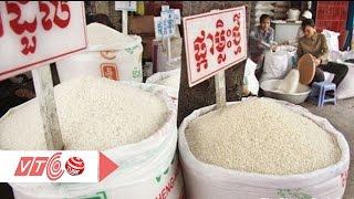 Người Việt Nam ăn gạo… Campuchia!    VTC