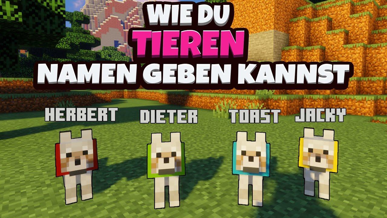 Minecraft - Tieren Namen geben / Tiere benennen   1.16