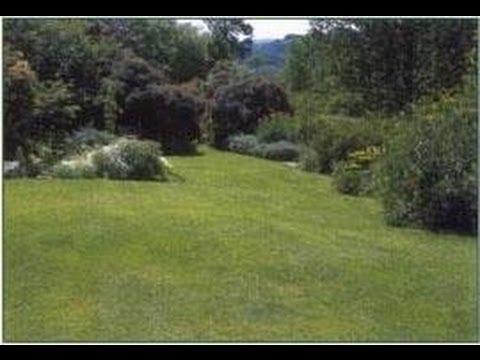 savoir jardiner pelouses gazons tous les secrets